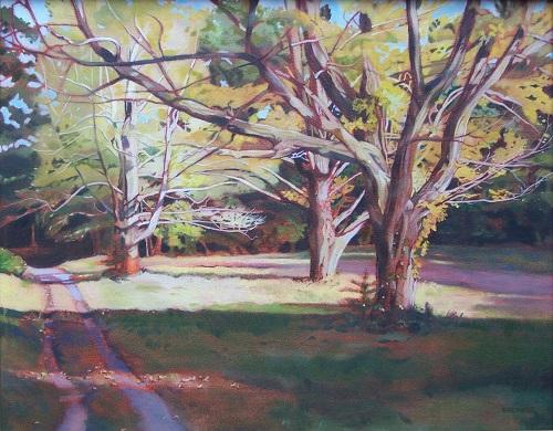 Autumn Shadows- Maudslay (2)