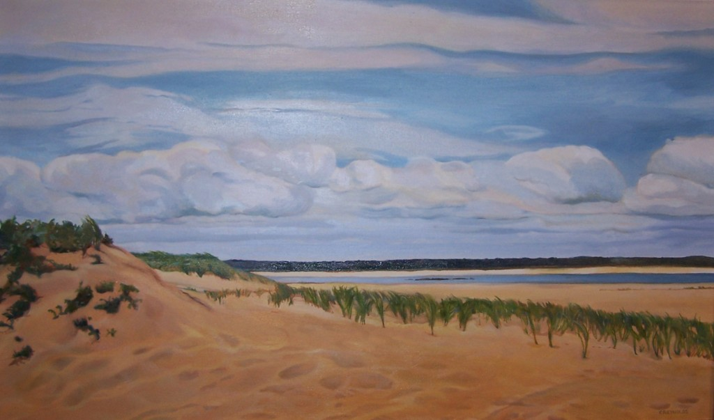 """Sandy Point- Plum Island"""